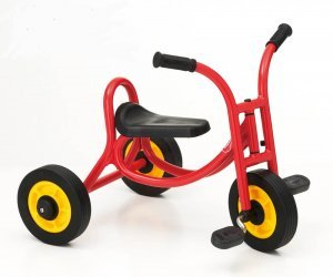 Weplay Small Trike